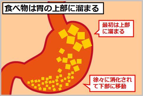 食後に横になるときは左が下