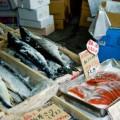 アスタキサンチン効果「1日6切れの鮭」
