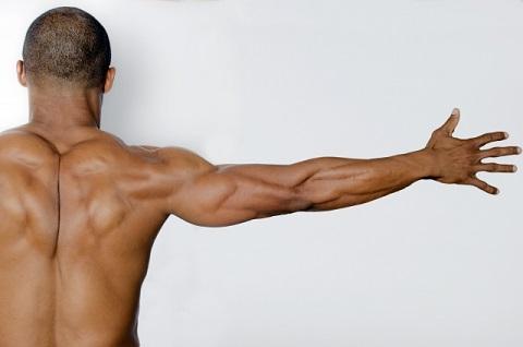 僧帽筋のストレッチは肩甲骨をしっかり開くこと