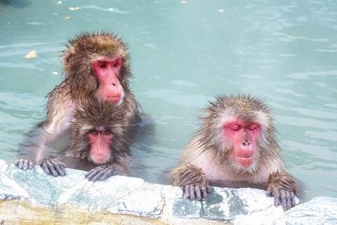 温冷浴は「水→お湯→水」を3回繰り返す健康法