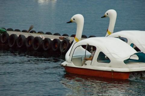 ホルモンバランスを整えるなら足こぎボート運動