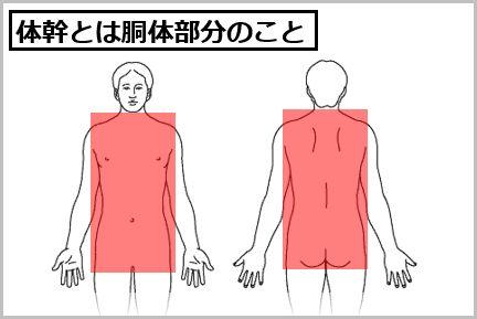 木場克己のKOBA式体幹トレーニングの方法
