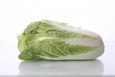 白菜の保存をひと工夫するとビタミンKが増える