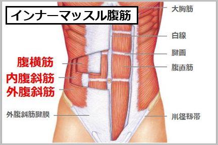 内臓脂肪レベルとインナーマッスル
