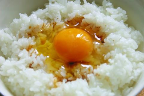目を覚ます朝食は卵かけご飯と豚汁の組み合わせ