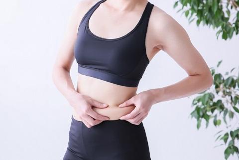 脂肪とは効率的なエネルギー源の中性脂肪のこと