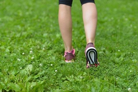 アキレス腱が太い人は心臓病になるリスクが高い