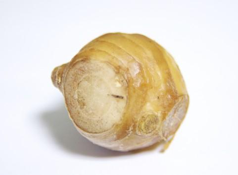 脂肪や糖質の燃焼が促進する「蒸し生姜」作り方