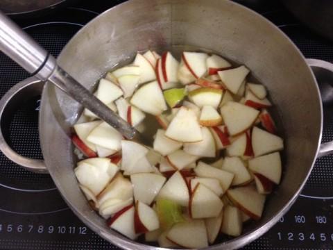 水キムチレシピはりんごの効果で乳酸菌が大繁殖
