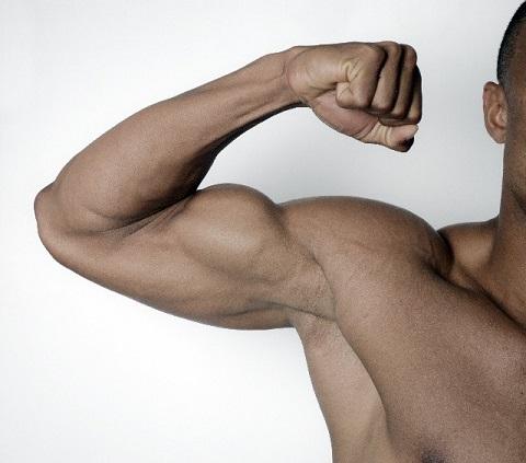 筋肉の付け方は遺伝子タイプによって違っていた