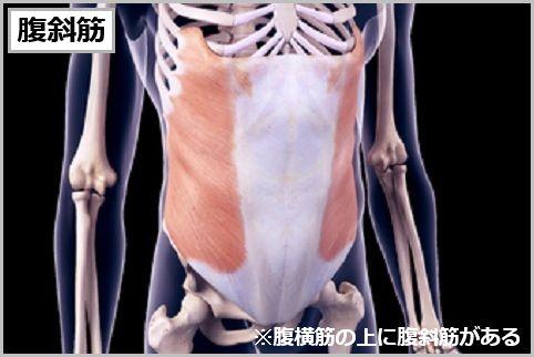 腹筋のインナーマッスルは「腹横筋と腹斜筋」