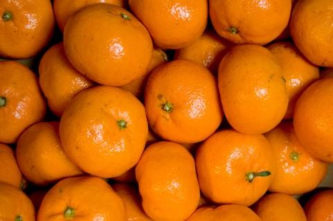 太る原因は毎朝飲んでいるオレンジジュースかも