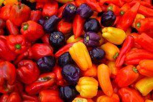 筋肉をつける食事の基本はタンパク質とビタミンB6