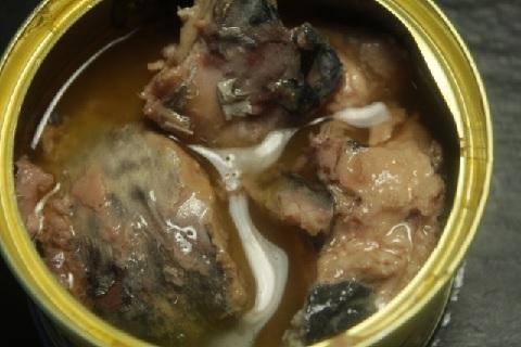 鯖の水煮缶が毎日食べられる血液サラサラレシピ