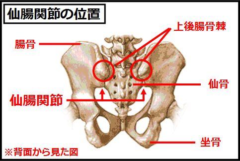 仙腸関節ストレッチの前に位置を把握
