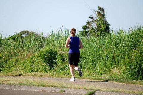 実戦的に腹筋を鍛えるならインナーマッスル強化