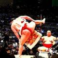 腹斜筋の筋トレは相撲の四股踏みが効果的だった