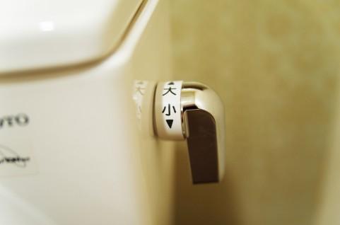 快便に効果アリ!洋式トイレの前かがみポーズ