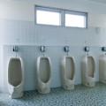 尿路結石の予防のカギ「オステオポンチン」とは