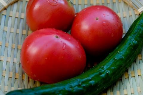 インフルエンザ予防は緑黄色野菜のビタミンA